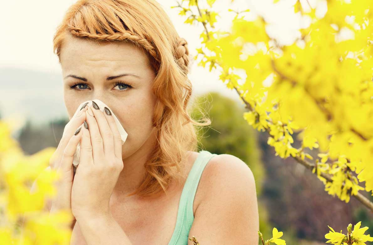 Αλλεργίες στο σπίτι